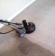 Orange County Carpet Cleaning services!
