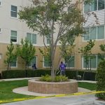We handle all student housing window cleaning