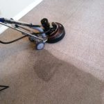 carpet cleaning in progress, see the difference, dirty to clean